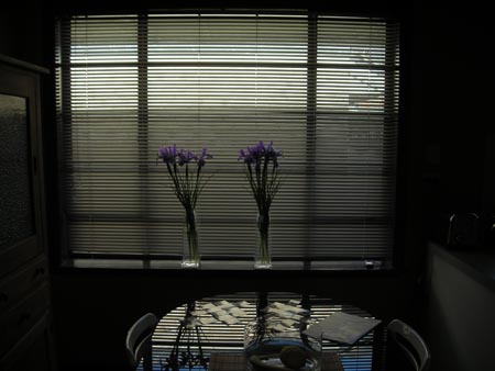 Irises: lifting the tone of households everywhere.