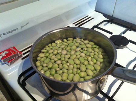 Beans being blanched